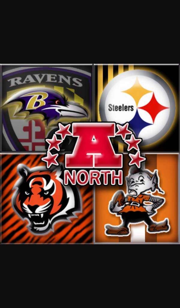 AFC NORTH cover image
