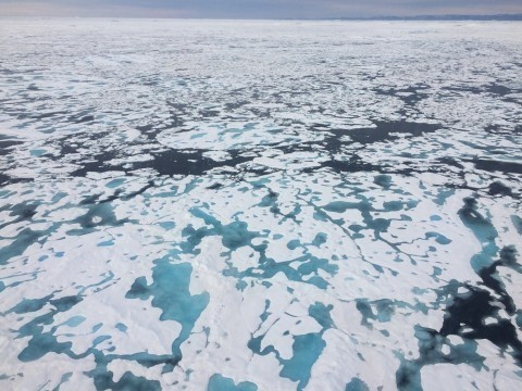 'Things are getting weird in the polar regions'