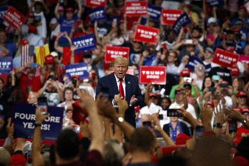 Trump, outsider-turned-insider, sells self as rebel for 2020