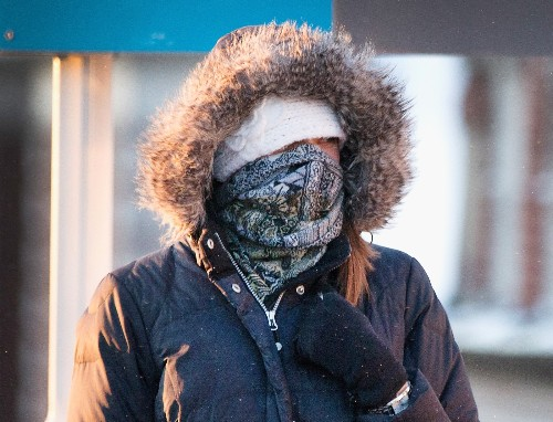 Baby It's Cold Outside! In Pictures
