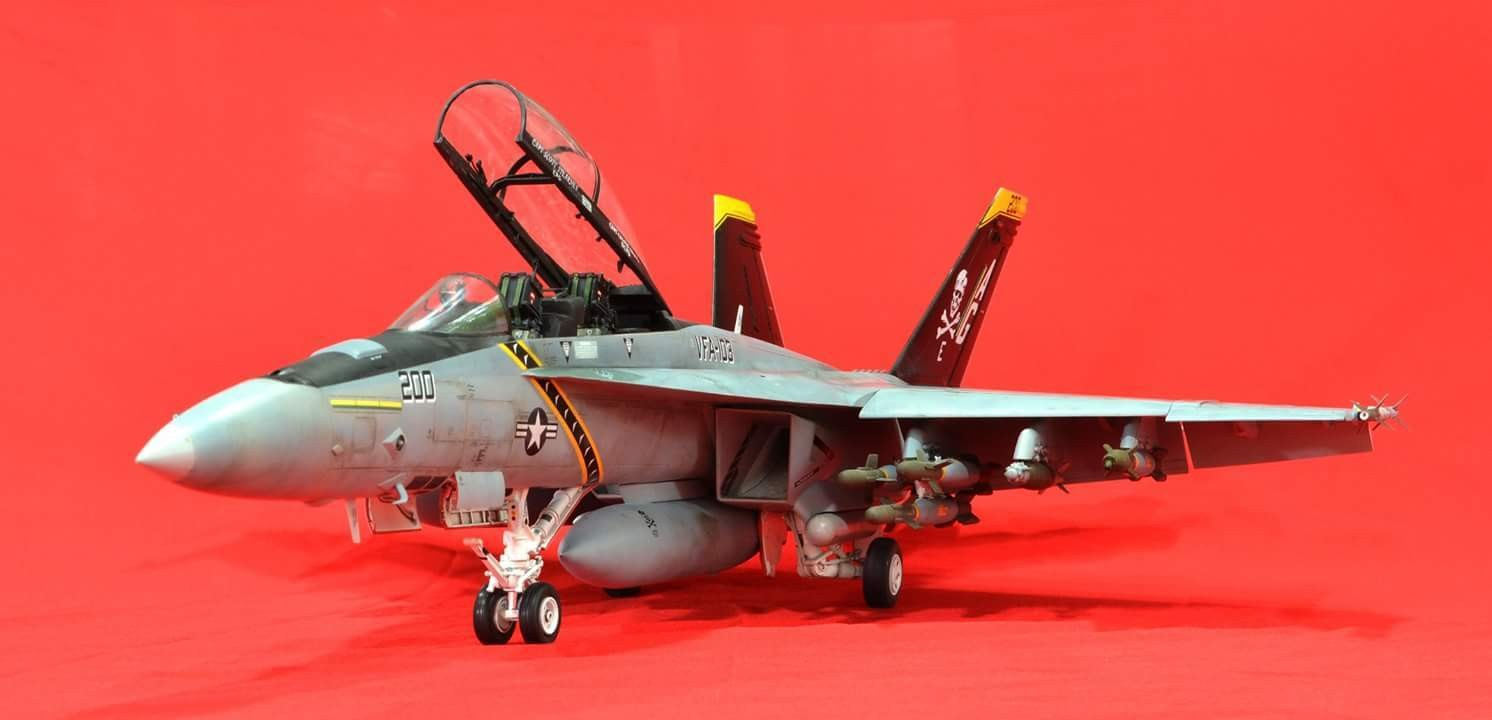Trumpeter; F/A-18F 'Jolly Roger', 1/32 scale. In my opinion, F-14 shape are the most suitable fighter jet to wear the Jolly Roger mark.