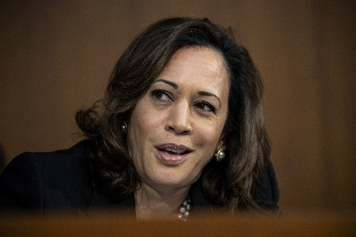 Kamala Harris in South Carolina: 'Fight for ... who we are'