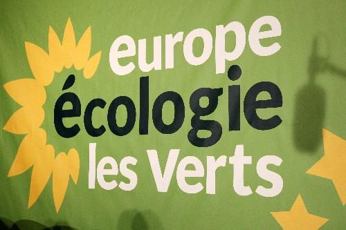 David Belliard élu tête de liste d'EELV pour les municipales à Paris