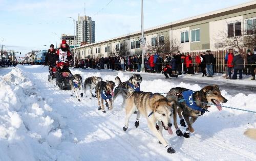 Top Iditarod mushers, 41 minutes apart, near final push to Nome