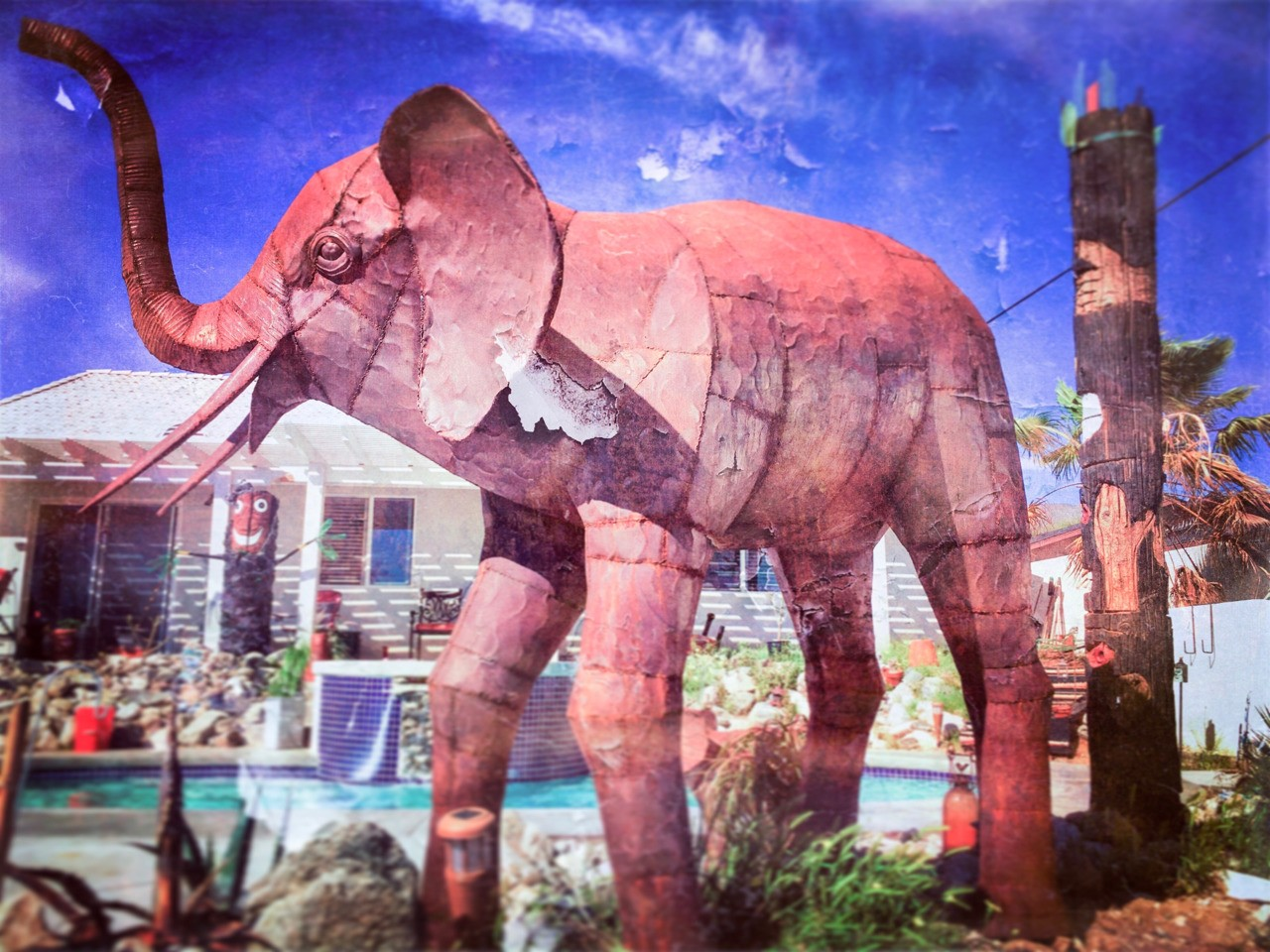 The Colonel . . It is surreal to me to see an elephant outside our bedroom window. The first time it pees in the pool though its outta here. . . #artuocastenellos #themetalcorral #banning #metal #backyard #pool #deserthotsprings #tiki #tikipole #tikitotem #jungle #desert #rusty #apple #iphone #iphone6splus #iphonography #elephant #hipstamatic #stackablesapp