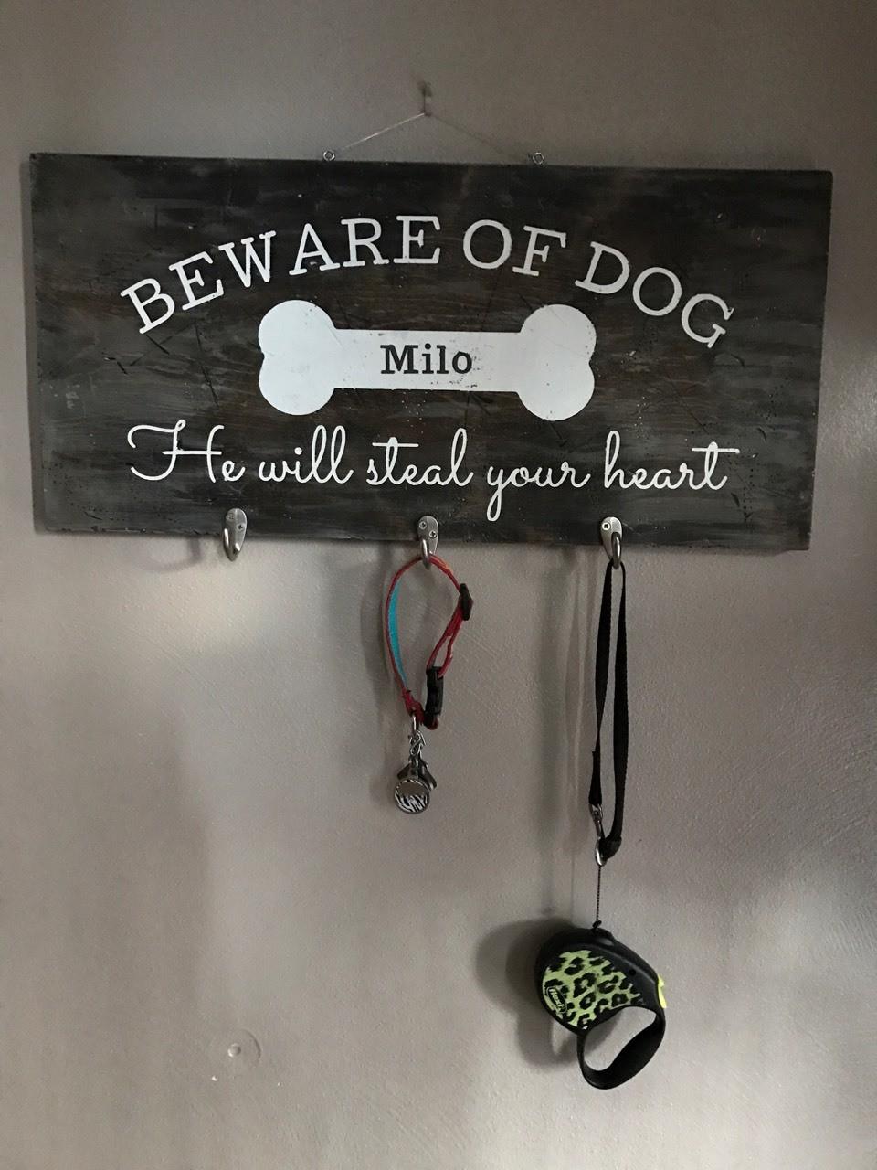 Milo's Pics