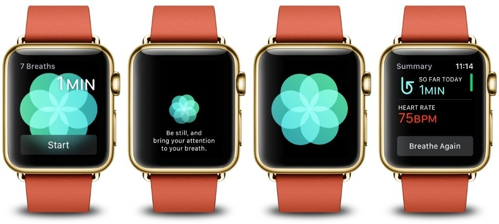 """What is the Science Behind the Apple Watch """"Breathe"""" App in watchOS 3?"""