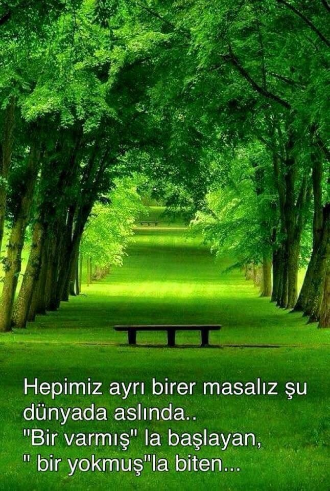Seçkiler - Magazine cover