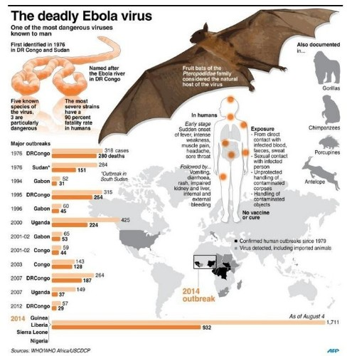 Here's An Updated Glimpse At The Unprecedented Ebola Outbreak In Africa