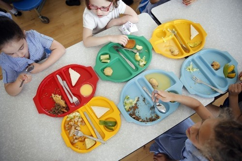 Do Healthy Lunches Improve Student Test Scores?