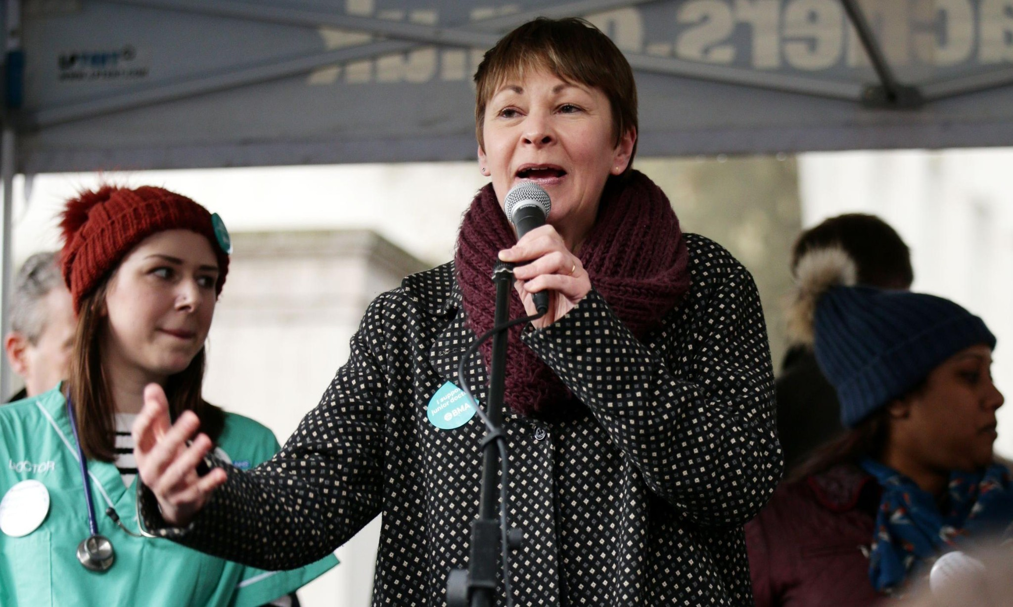 Police anti-extremism unit monitoring senior Green party figures