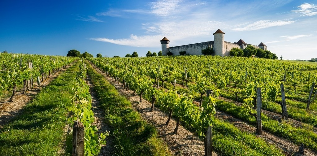 Bordeaux: a wine drinker's holiday