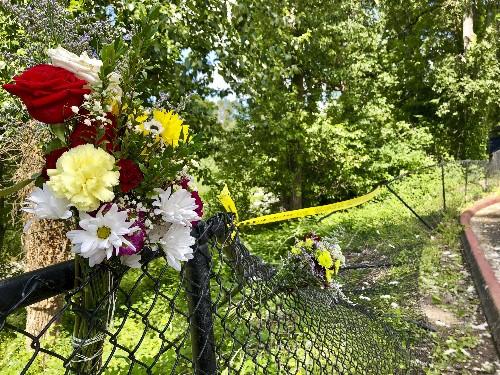 German tourists run over, killed at Washington swimming hole