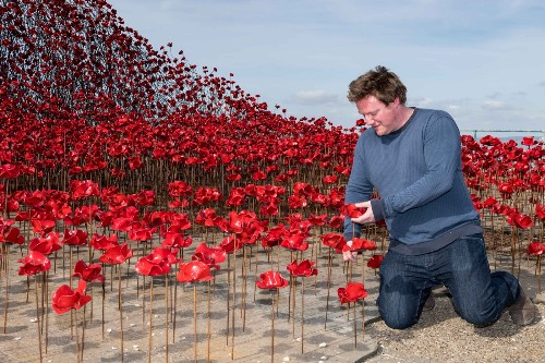 Poppy Sculpture 'Wave' in England: Pictures