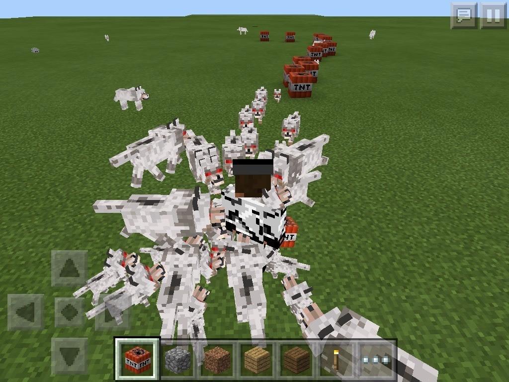 Sometimes if you try to kill a wolf they will chase you. As you can see dogs are all chasing me
