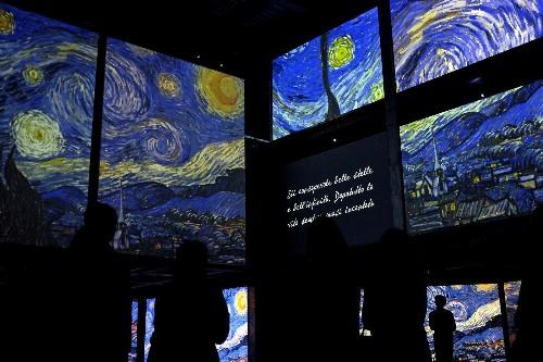 High Def Van Gogh Exhibit in Rome: Pictures