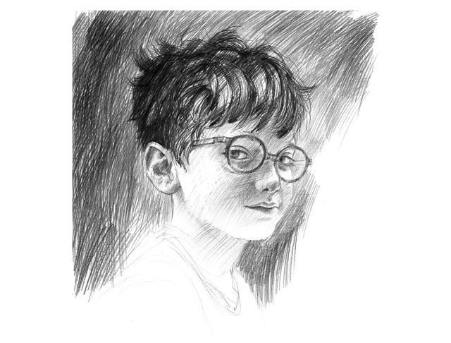 Harry Potter's World Like You've Never Seen It Before: Illustrated