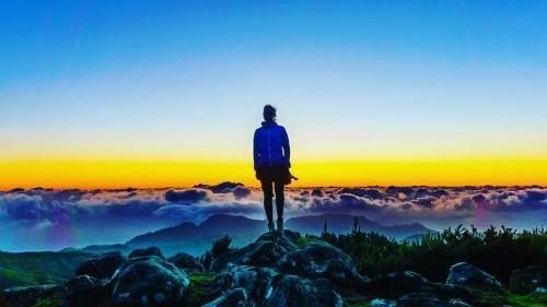 NEWS. MADEIRAZINE .COM (Madeira) - cover
