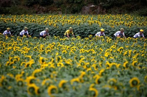A Photo Tour of the Tour de France