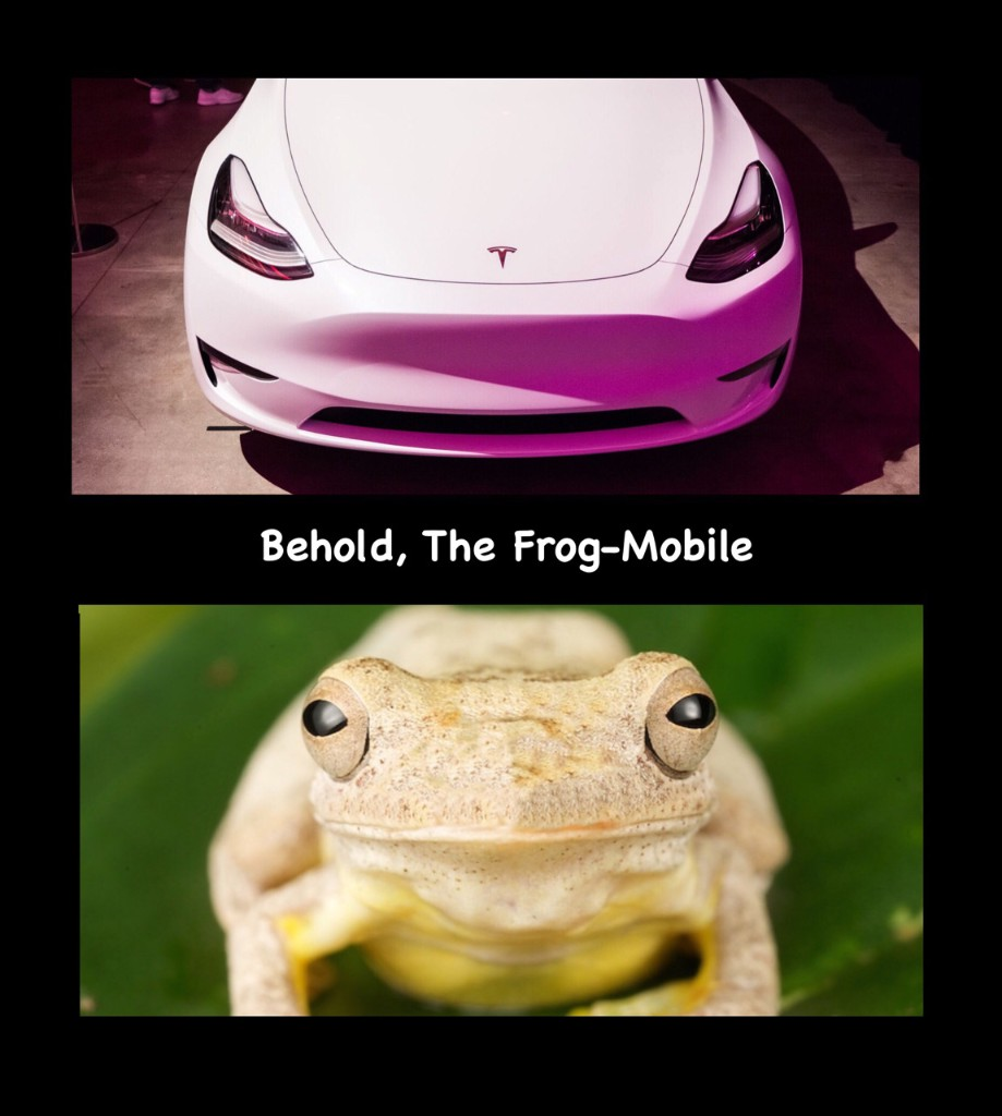 Tesla Is Doomed - Cover