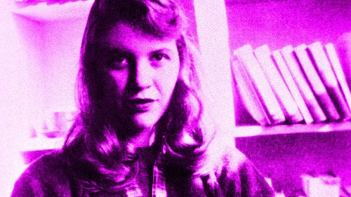 The Mystery of Sylvia Plath's Lost Novel