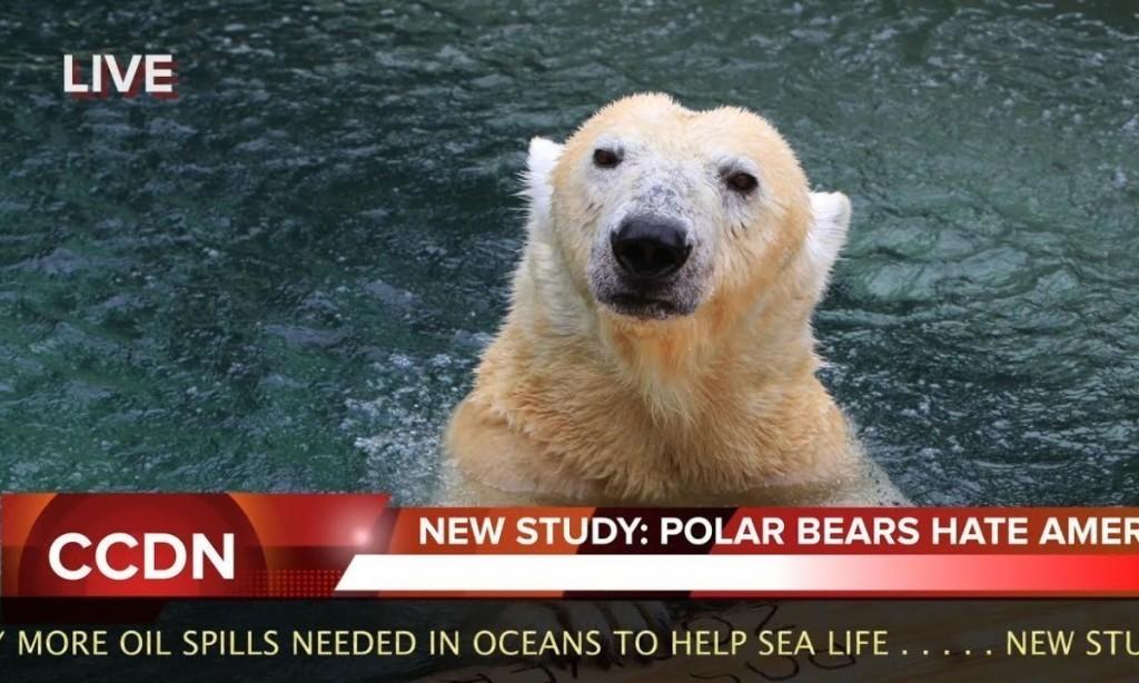 Climate Change Denier News