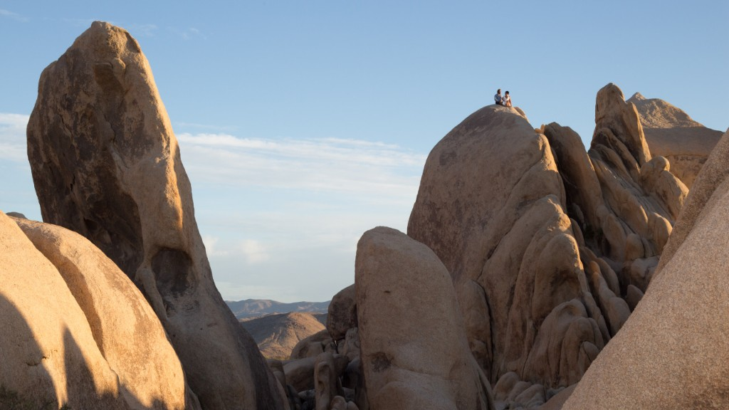 Day 2: Day in Joshua Tree