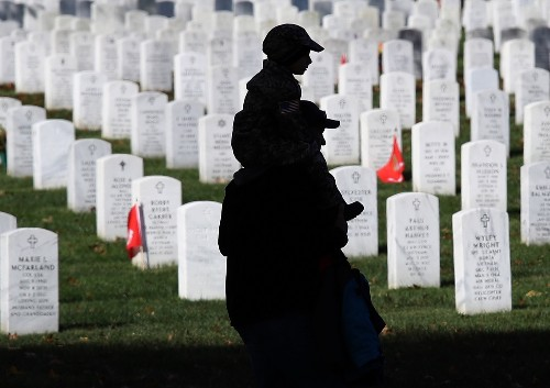 Veterans Day in Pictures