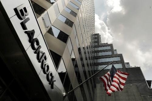 BlackRock strategists advocate trimming investment portfolio risk