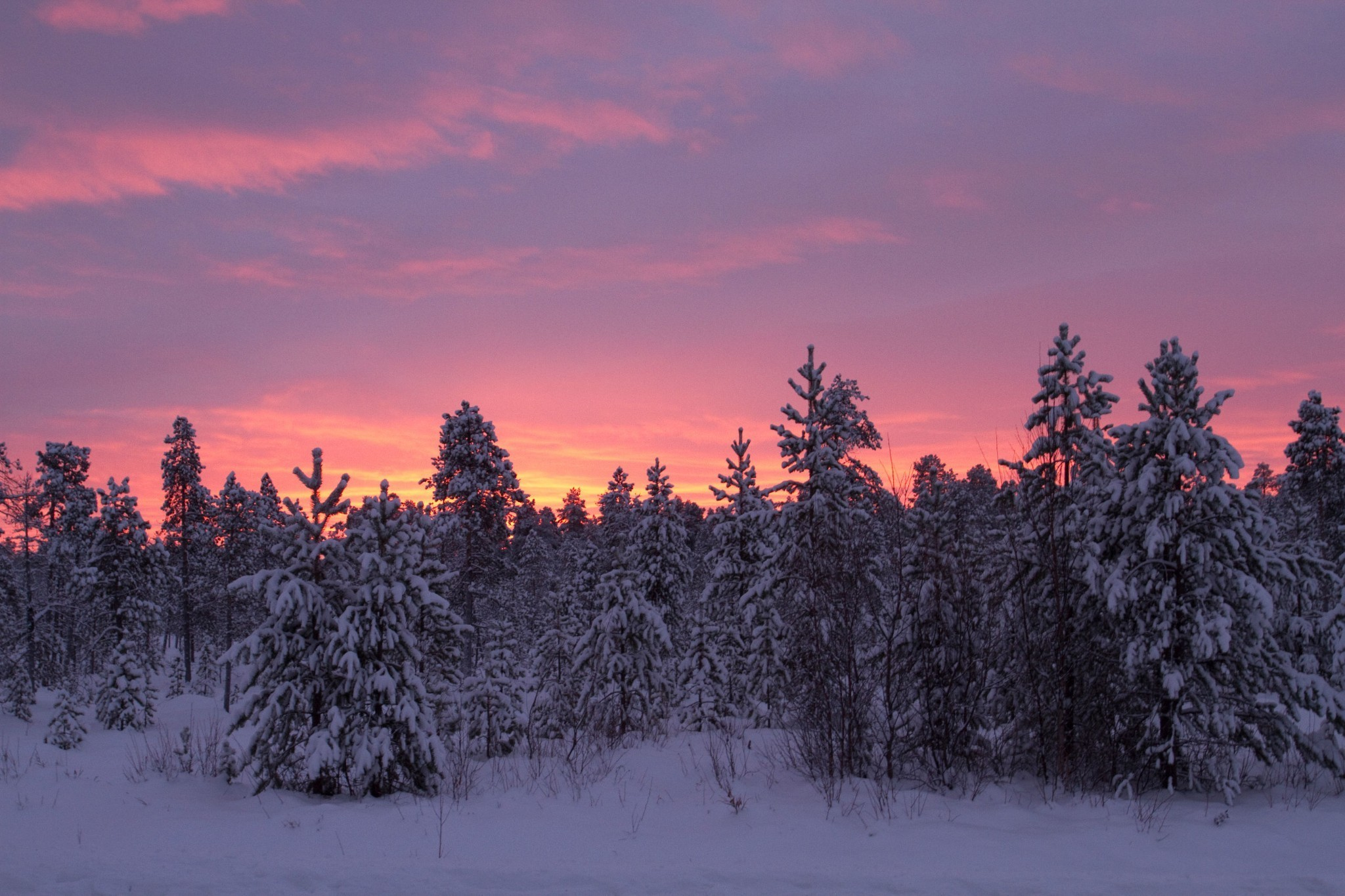 Lapland beyond Santa: culture and wilderness in northern Finland