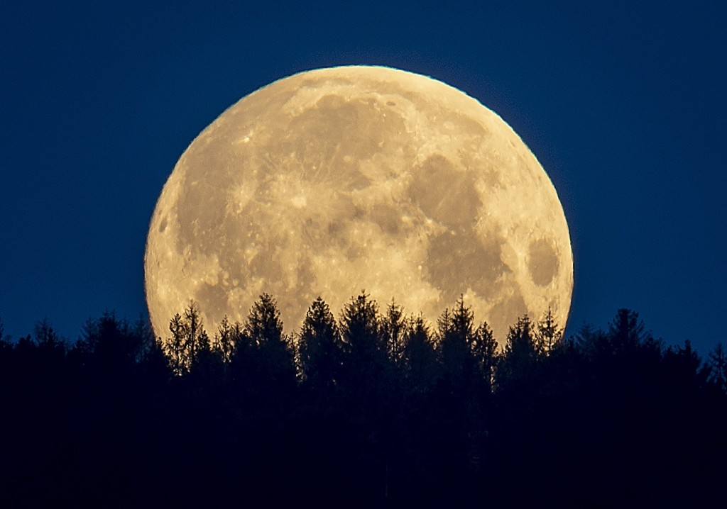 The Flower Supermoon, the Lockdown Eases and Pictures of the Week