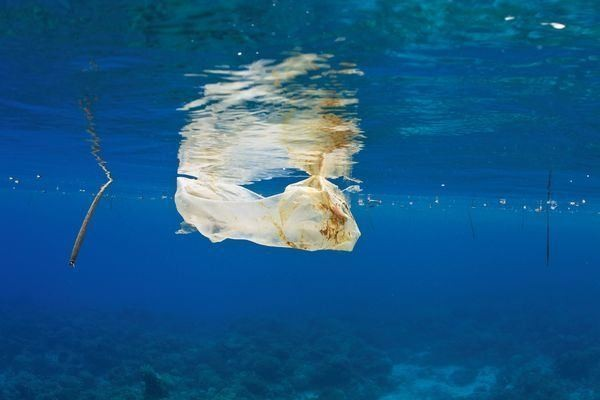 Eight Million Tons of Plastic Dumped in Ocean Every Year