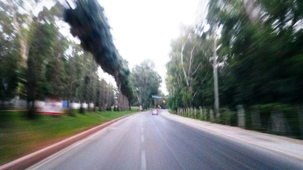 Çukurova Üniversitesi Giriş Yolu.