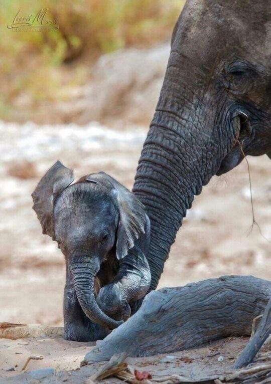 Mamy e baby 😘
