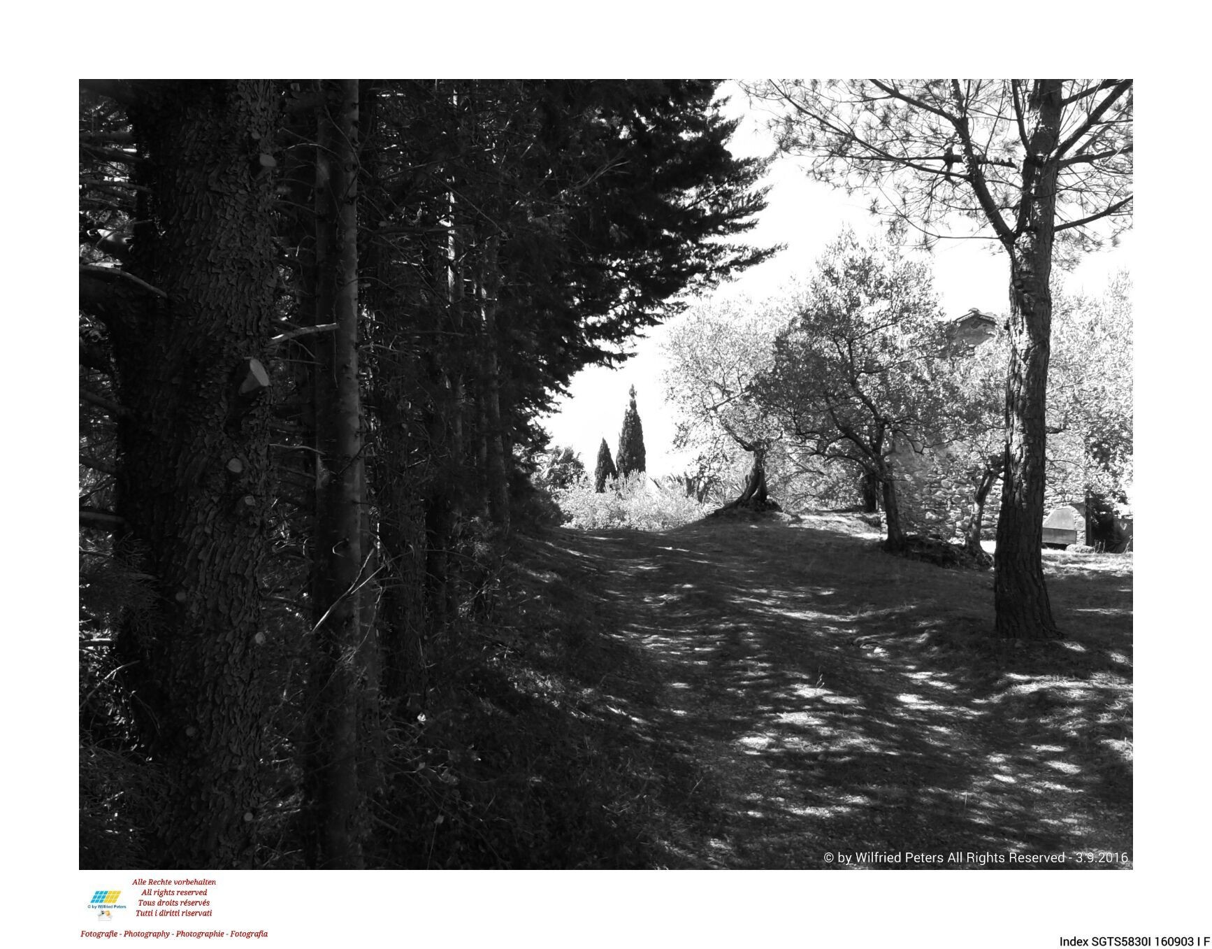 #Fotografie #Photography #Photography #Fotografie #schwarzweiss #blackandwhite #noiretblanc #biancoenero #Italien #Italy #Italie #Italia