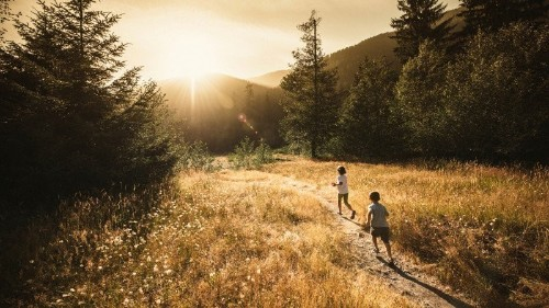 5 Ways to Get Kids Into Nature