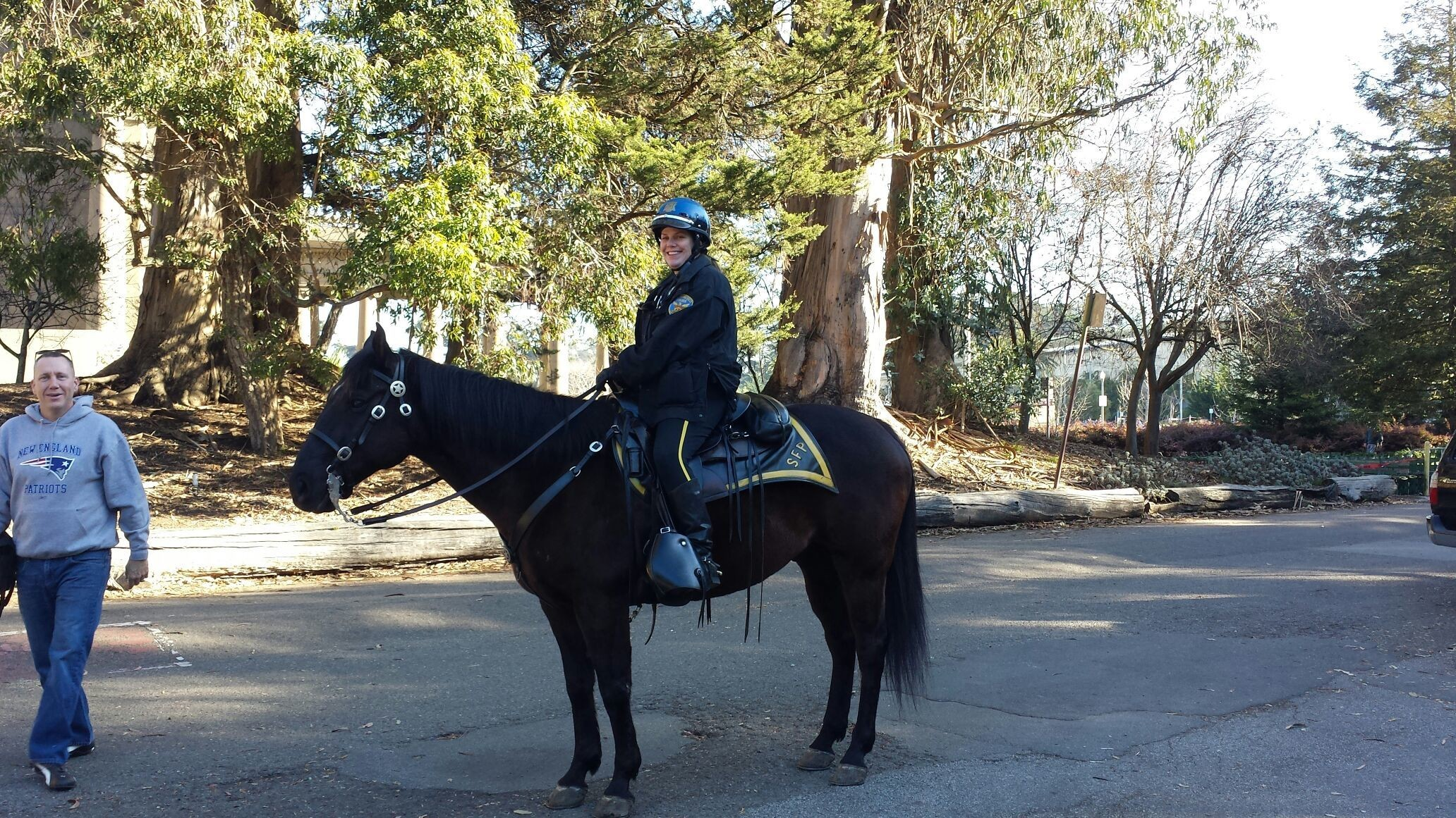Bubba the Police horse in Golden Gate park. The policewoman riding Bubba has been in the SFPD for 28 years.