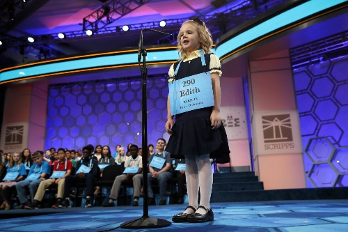 National Spelling Bee Contest Gets Serious: Pictures