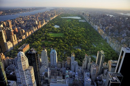 10 Books to Read Before You Go to New York City