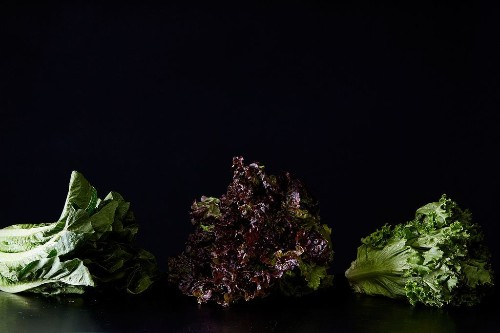 All About Lettuce - How to Buy, Store, and Use Leafy Greens