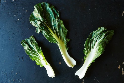 Everything You Need to Know About BokChoy