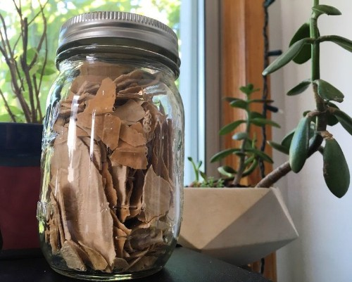 How To Preserve Your Sourdough Starter for Months—SansFreezer