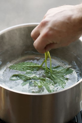 How to Blanch Herbs for Syrups + a Mojito