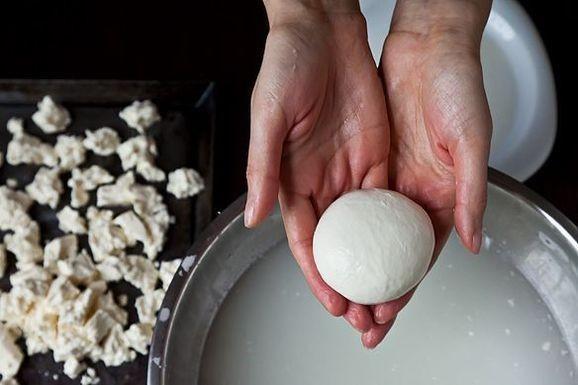 How to Make Mozzarella at Home