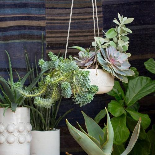 1 Ceramic Hanging Planter, Styled 4Ways