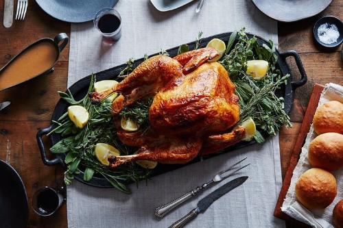 Everything You Need to Know for a Better ThanksgivingBird