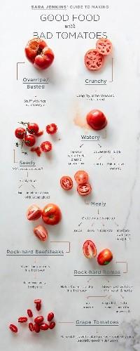 Sara Jenkins' Guide to Making Good Food with BadTomatoes