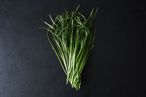 Garlic Chives and How to UseThem