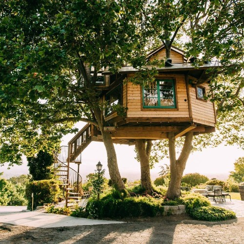 12 Stunning Airbnb Tree Houses For When You Want to Live in the Sky