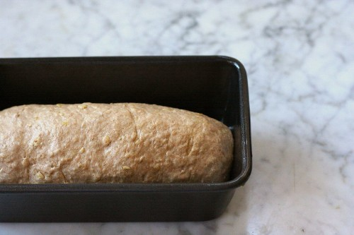 Baking with Whole Wheat Flours (+ A Recipe for Whole Wheat SandwichBread)
